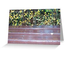 Wooden bench after a rain Greeting Card