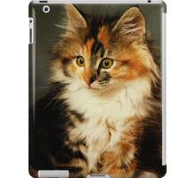 iPad Cover-Calico Cat iPad Case/Skin