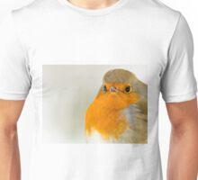 Close-Up of a Robin Unisex T-Shirt