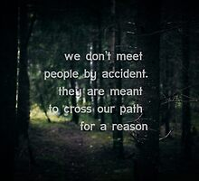 We don't meet people by accident, they are meant to cross our path for a reason. by netza