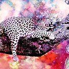LEOPARD IN TREE by Tammera