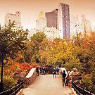 Autumn at Gapstow Bridge by Jessica Jenney
