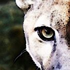 Florida Panther Art - Hungry by Sharon Cummings