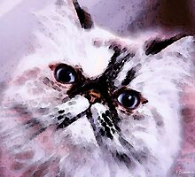 Persian Cat Art - Just Moi by Sharon Cummings