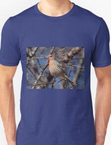 Male House Finch Bird  T-Shirt