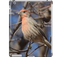 Male House Finch Bird  iPad Case/Skin