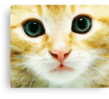 Cat Art - Whiskers Canvas Print