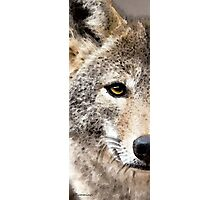 Wolves Art - Lone Wolf Photographic Print