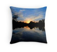 The Canvas Painted Half & Half Throw Pillow