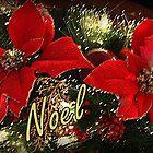 Noel by AuntDot