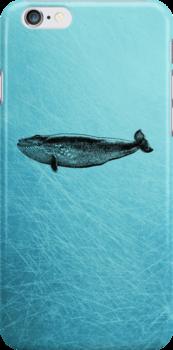 Whale - iPhone Case by Carol Knudsen