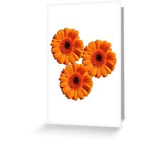 Flower triangle Greeting Card