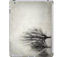 Winter in Matsqui iPad Case/Skin