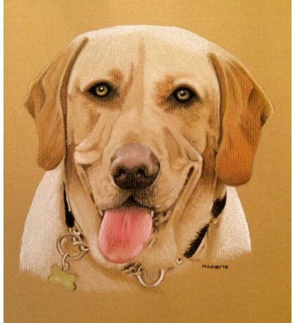 Dudley the adorable golden labrador Sticker