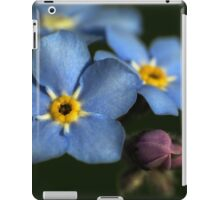 Forget-Me-Nots 3 iPad Case/Skin