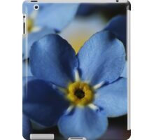 Forget-Me-Nots 7 iPad Case/Skin
