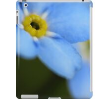 Forget-Me-Nots 9 iPad Case/Skin