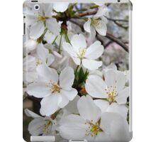 Cherry Blossoms 1 iPad Case/Skin