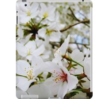Cherry Blossoms 5 iPad Case/Skin