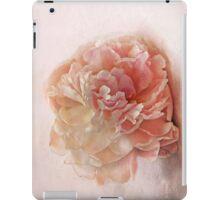 porcelaine iPad Case/Skin