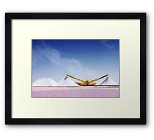 Worth Their Salt Framed Print