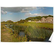 Ogmore river & ruin Poster