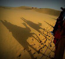 The Shadow Of A Camel by PurpleAardvark