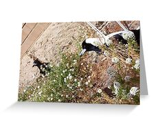 Magpies - 07 11 12 -  Seven Greeting Card