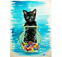Little OJ...painting :) Photographic Print