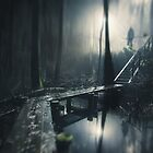 Strange Ways by Mikko Lagerstedt