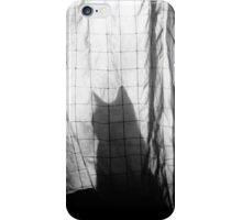 Mr. Wallace iPhone Case/Skin