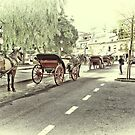 Horse-drawn Carriages by Aase