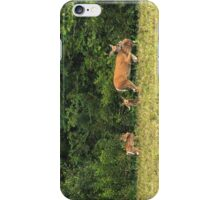 Doe with Triplets iPhone Case/Skin