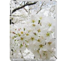 Cherry Blossoms 12 iPad Case/Skin