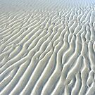 Tidal Lines... by LindaR