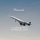 Concorde iPad by Catherine Hamilton-Veal  
