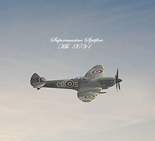 Spitfire iPad by Catherine Hamilton-Veal  ©