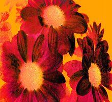 Vintage Flowers by Vitta