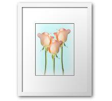 Simply Roses Framed Print