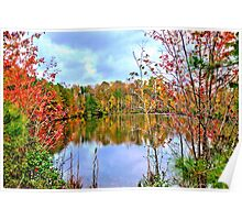 Fall Pond (HDR) Poster