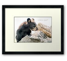Little Cub Framed Print