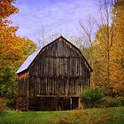 The Simplicity of a Barn by Debra Fedchin