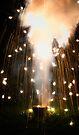 Fireworks by Nigel Bangert