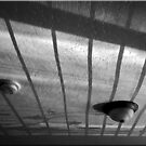 Ceiling Shadows by Chet  King