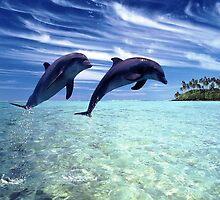 Dolphins iPad case by Jnhamilt