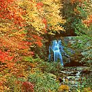 AUTUMN AT MEIGS FALLS by Chuck Wickham