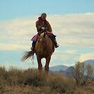 Cowgirl by Jessie Miller/Lehto