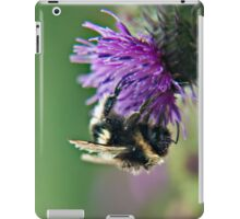 Scruffy Old Bumble Bee macro iPad Case/Skin