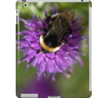 Bumble Bee on a thistle macro iPad Case/Skin