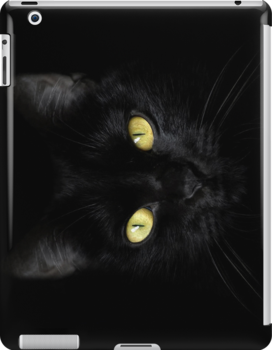 Black on Black iPad Case by Wojciech Dabrowski